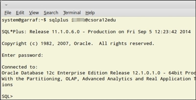 Accessing the Oracle Database from Linux