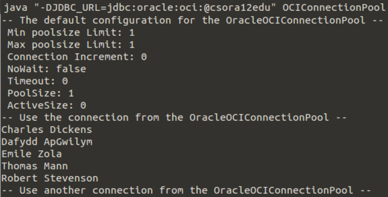 Accessing the Oracle Database with Java